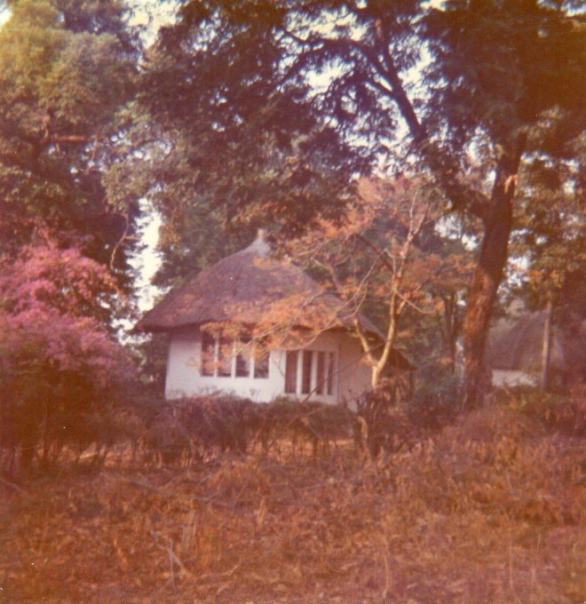 house at dawn